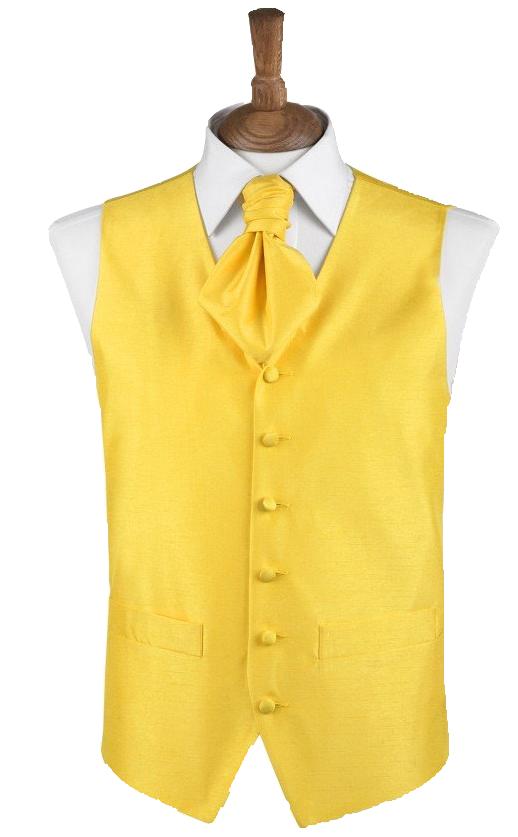 beau gilet jaune